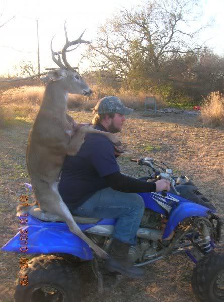 Deer on ATV
