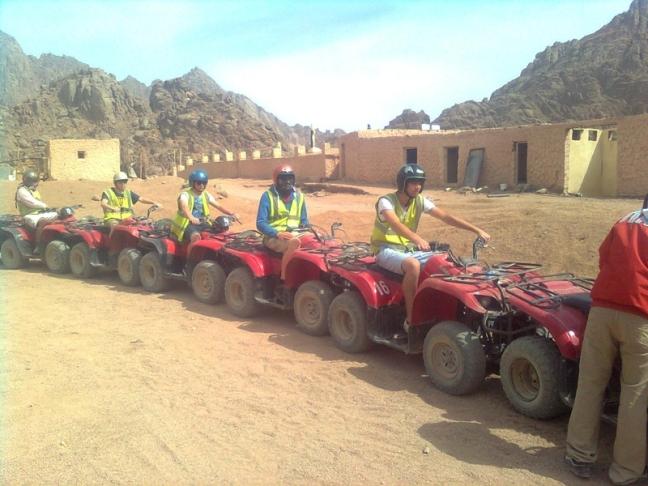 line of ATV's